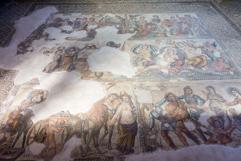 Paphos Mosaic
