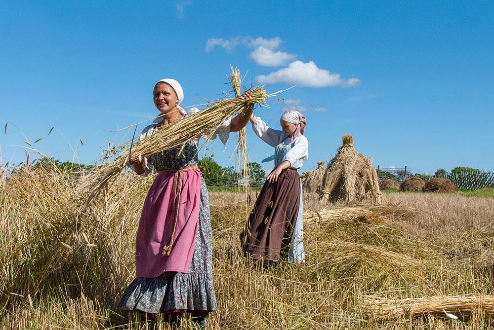 Kizhi farmers